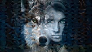 ***Одинокая волчица*** Александр Добронравов