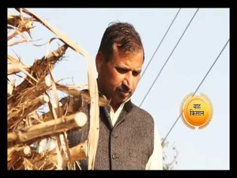 2 साल एक पड़ताल - वाह किसान | Wah Kisan - Success Story - 7 (Spot)