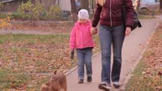 Все О Домашних Животных: Воспитываем Детей И Животных Вместе
