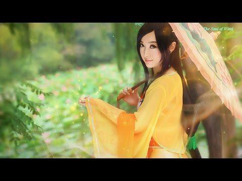 Most Emotional Music - 1 Hour beautitful and sad Chinese Music Instrument