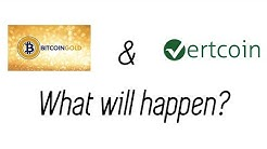 What Does Bitcoin Gold Mean for Vertcoin?