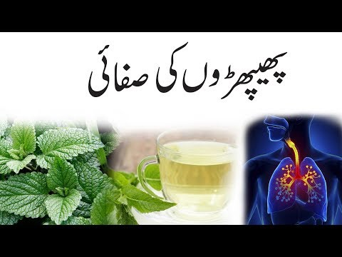 How To Detox Your Lungs - Clean Your Lungs In 5 Days