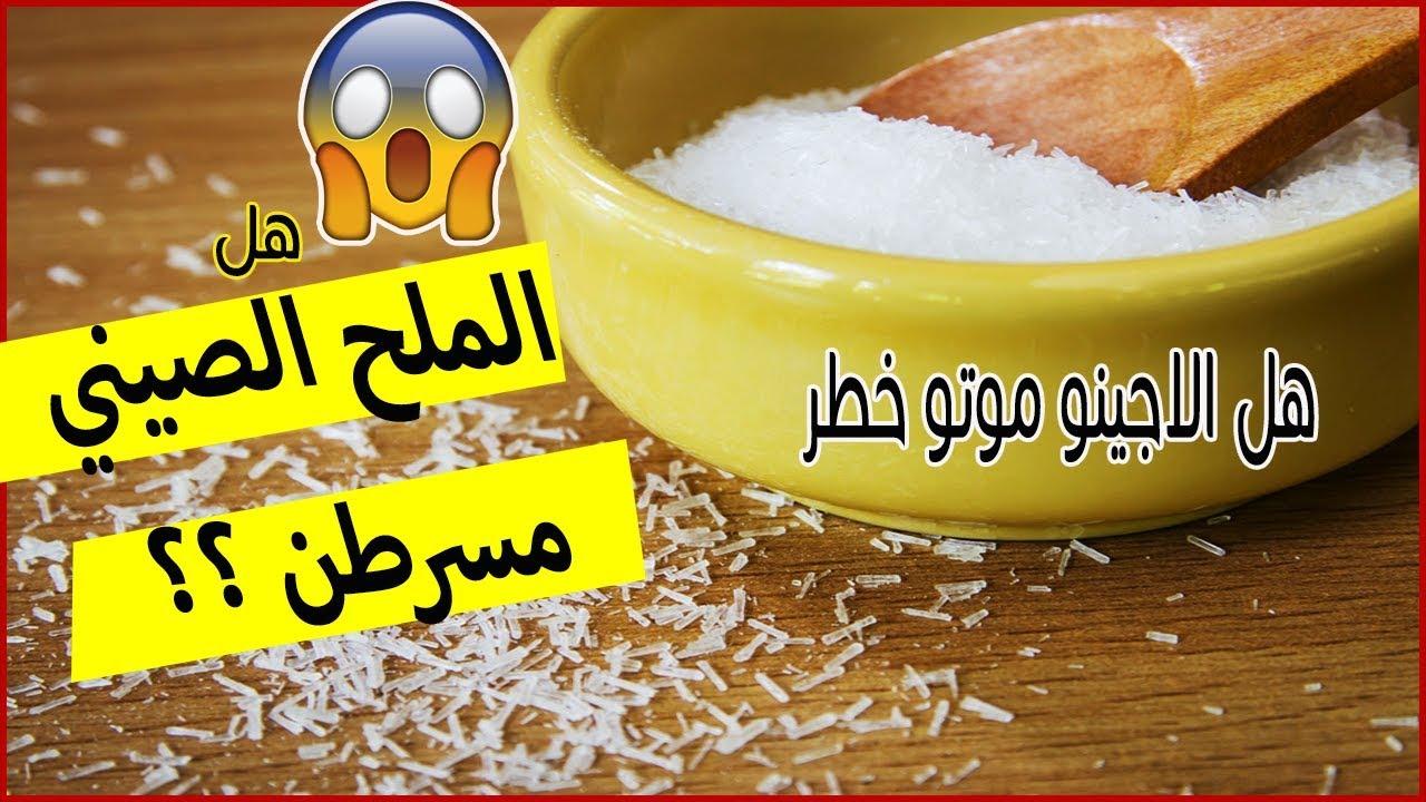 الملح الصيني اجينو موتو هل يسبب السرطان وتلف خلايا المخ Youtube