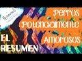 ElResumen (Perros Potencialmente Amorosos) - PROTAGONISTAS
