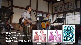 真心ブラザーズ 30th Anniversary Documentary「2019年ほぼ上半期」ダイジェスト版