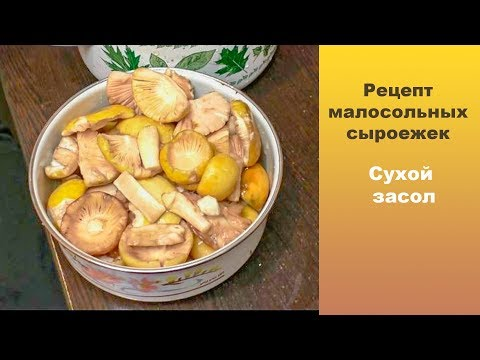 Рецепт малосольных сыроежек. Сухой засол.