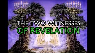 The Two Witnesses of Revelation (End Times) MUST WATCH!