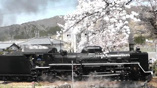 『 C57180+12系客車・快速 SLばんえつ物語[8226レ]』2021/4/3(JR磐越西線・咲花駅~東下条駅「咲花踏切」)
