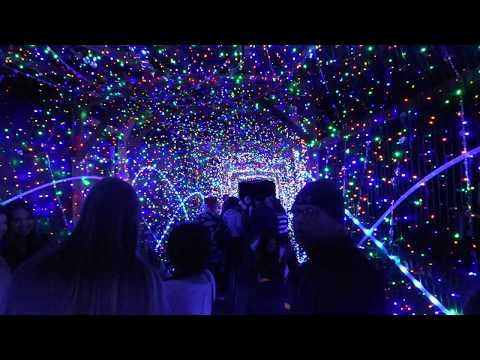 FULL TOUR: LA Zoo Lights Nighttime Holiday Light Experience 2017