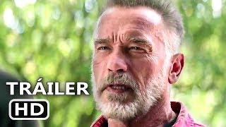 Terminator 6 pelicula completa en español