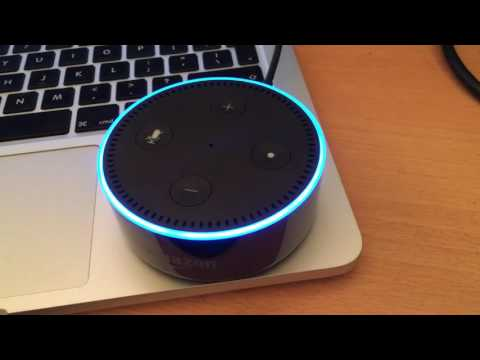 Asking Alexa what WTF stands for