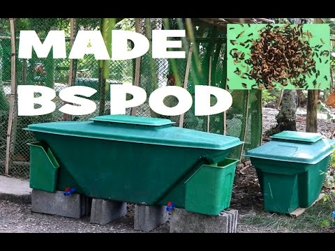 Black Soldier Fly Larvae Composting Bs Pod Design By Made Youtube