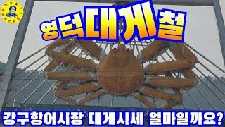 경북영덕 강구항 어시장 수산물, 영덕대게, 홍게 시세 …