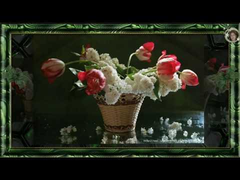 Красивая мелодия! Francis Goya   Lights Of Moscow