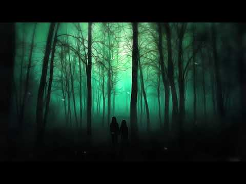 D.V.S-Mysterious forest (dark music)