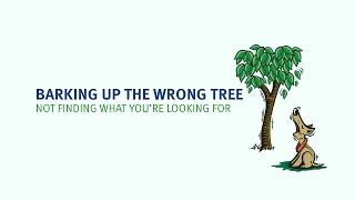 English Idioms | Barking up the wrong tree