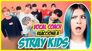 STRAY KIDS (FELIX: ¿LA VOZ MÁS GRAVE DEL KPOP?)   VOCAL COACH REACCIONA   Gret Rocha
