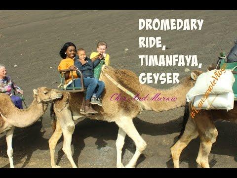 Visit to the Timanfaya, Dromedary, Geyser #LanzaroteVlogs Day3 Vlog #006