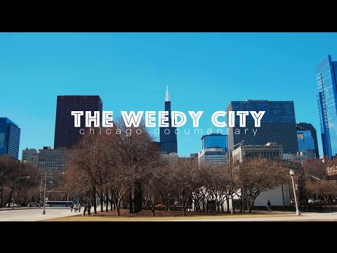 The Weedy City || Chicago weed documentary | GH4