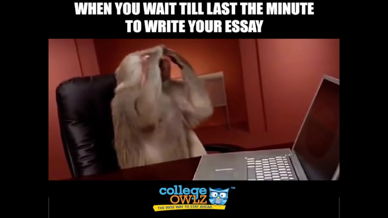 Need Someone's Help With Writing An Essay in 3 or 6 hrs?