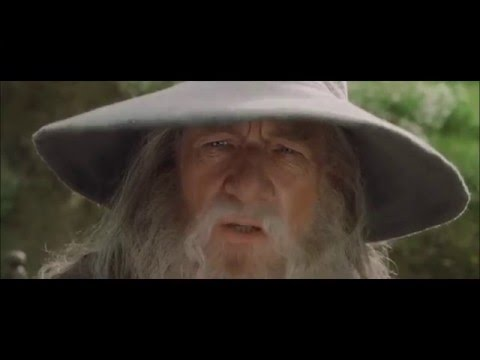 A Tribute To Peter Jackson's The Lord Of The Rings