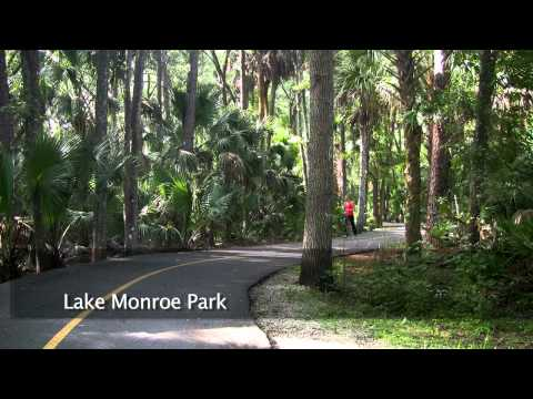 Nature is in IN Florida | Springs, State Parks, National Seashore