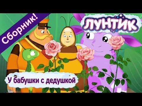 Лунтик 🌼 У бабушки с дедушкой 🌼 Сборник мультфильмов