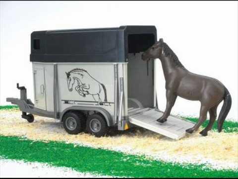 Ali Osram - Paardestrailer