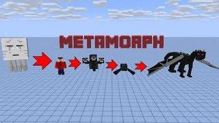 METAMORPH MOD!!! | Minecraft Mod Showcase