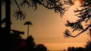 Sejarah Bumi Dari Ledakan Besar sampai Lahirnya Nusantara (trailer doang)