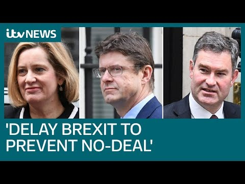 Senior ministers: Delay Brexit to prevent 'disastrous' no-deal   ITV News