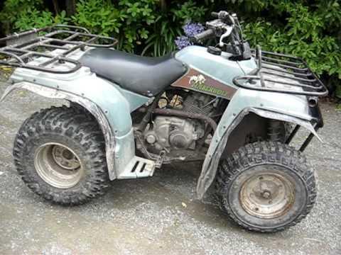 Yamaha  Timberwolf  Wheeler