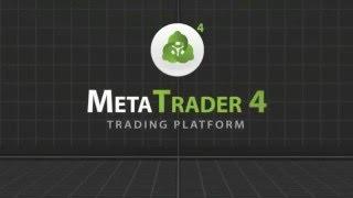 Meta Trader Trading Platform [MT4 & MT5]
