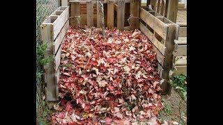 Опавшие листья - как я использую их. Переработка опавших листьев
