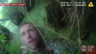 Pasco deputies arrest suspect hiding in swamp | Video released
