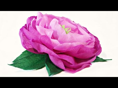 Tissue paper flowers peonies DIY Paper Peony / rose Flower Decorations tutorial easy for kids making