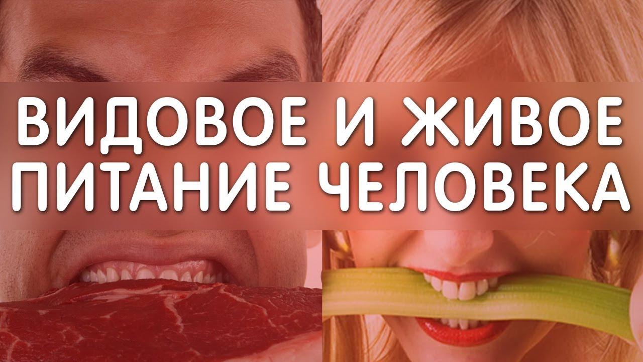 9 причин всех болезней человека! Кратко 2 часть. Еда и Жизнь. Фролов Ю. А.
