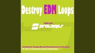 Destroy EDM Loops Perc 4 128 (Tool 9)