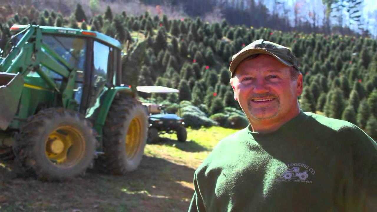 Spry Farms Nursery Landscaping And Christmas Trees Newland Nc