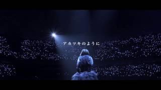 藍井エイル 『アカツキ』リリックビデオ from LAST BLUE at 日本武道館