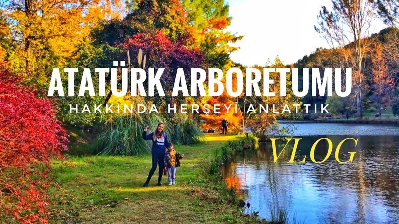 Atatürk Arboretumu- Belgrad Ormanı