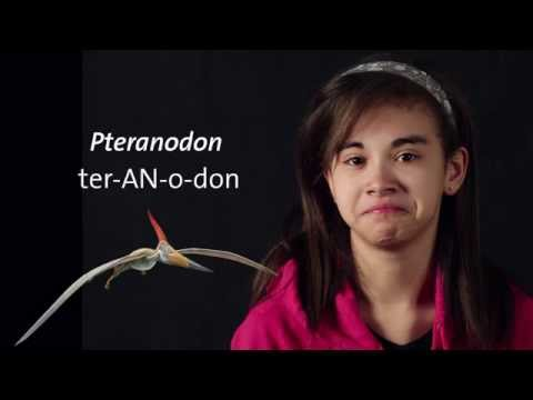How are Pterosaur Names Pronounced?