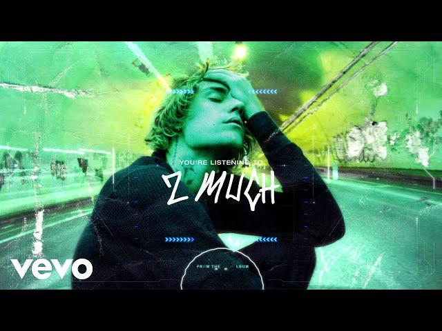 Justin Bieber - 2 Much (Visualizer)
