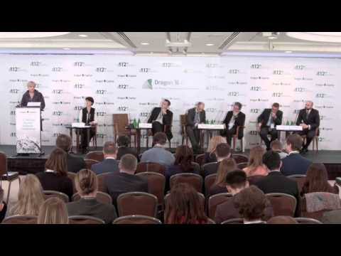 12th Annual Ukraine Investor Conference. Panel Discussion #2
