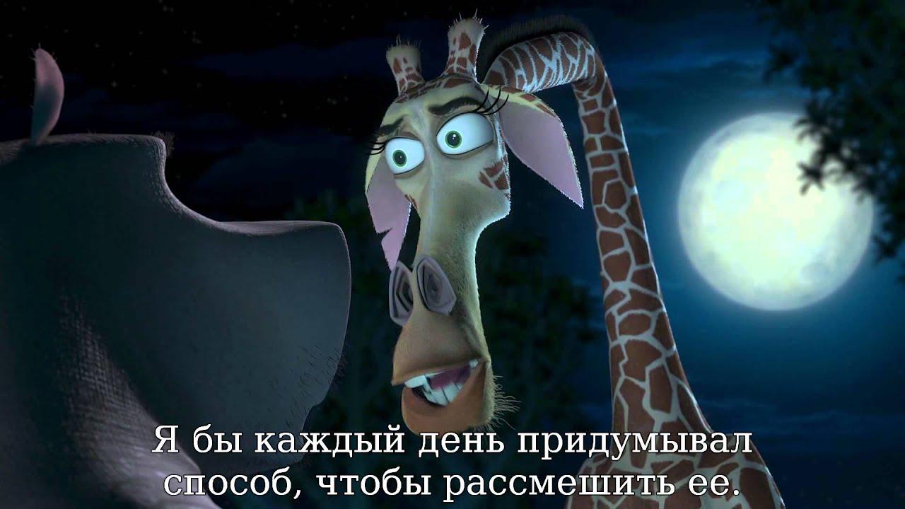Download Madagascar Escape 2 Africa 2008 BluRay 1080p x264 DTS Rus Ukr WiKi 00 54 17 00 55 03~1