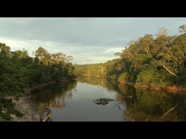 Suriname's paradise? Nature Resort Kabalebo.