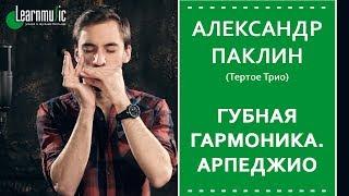 Урок по губной гармонике | Арпеджио в импровизации