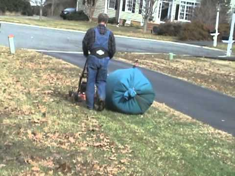 Walk Behind Mower With Leaf Bag Kit Youtube