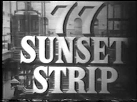 Some TV Commercials from the 19601961 TV Season!!