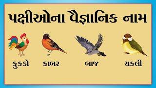 પક્ષીઓના વૈજ્ઞાનિક નામ | Scientific Names of Birds | scientific name list |
